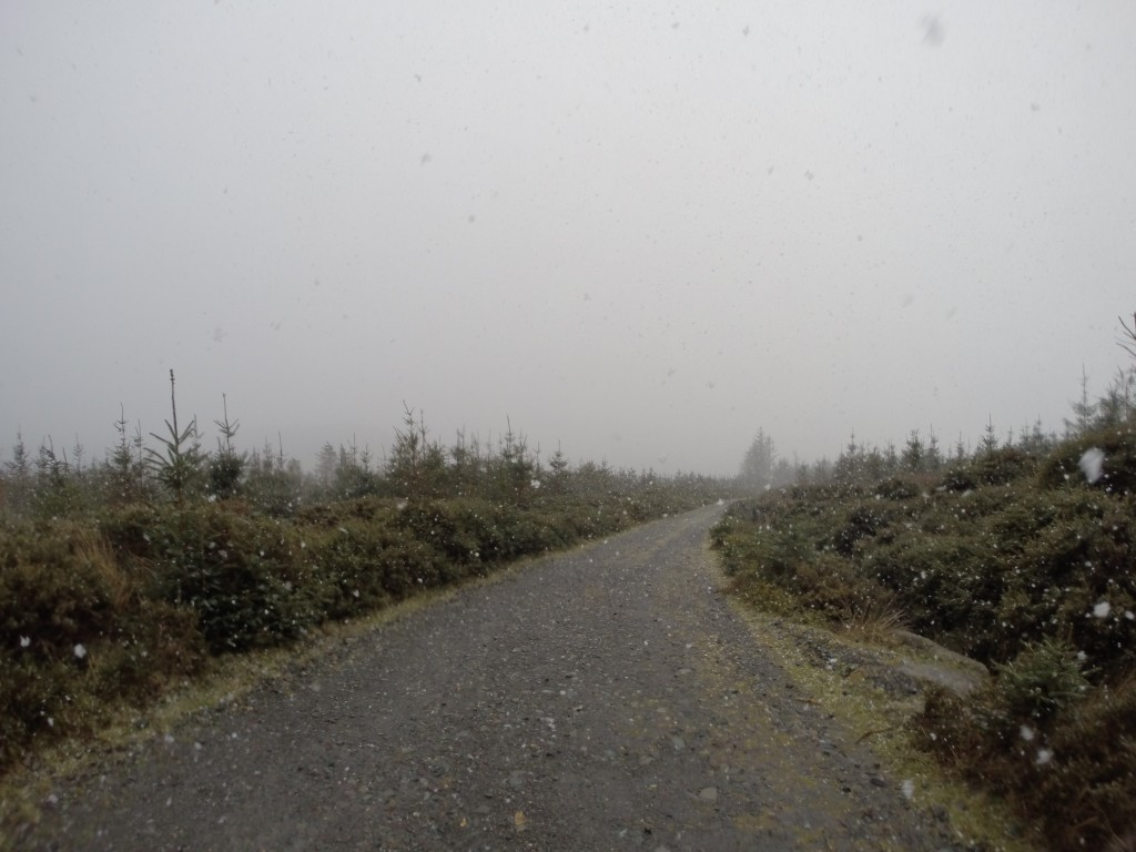 Wicklow Way snowflakes