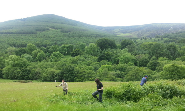 bracken trampling volunteers